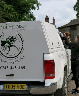Equipoise Mobile Farrier in Dorset